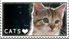 Cats stamp by Eyesofthewind