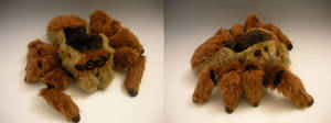 Jumping Spider Plush