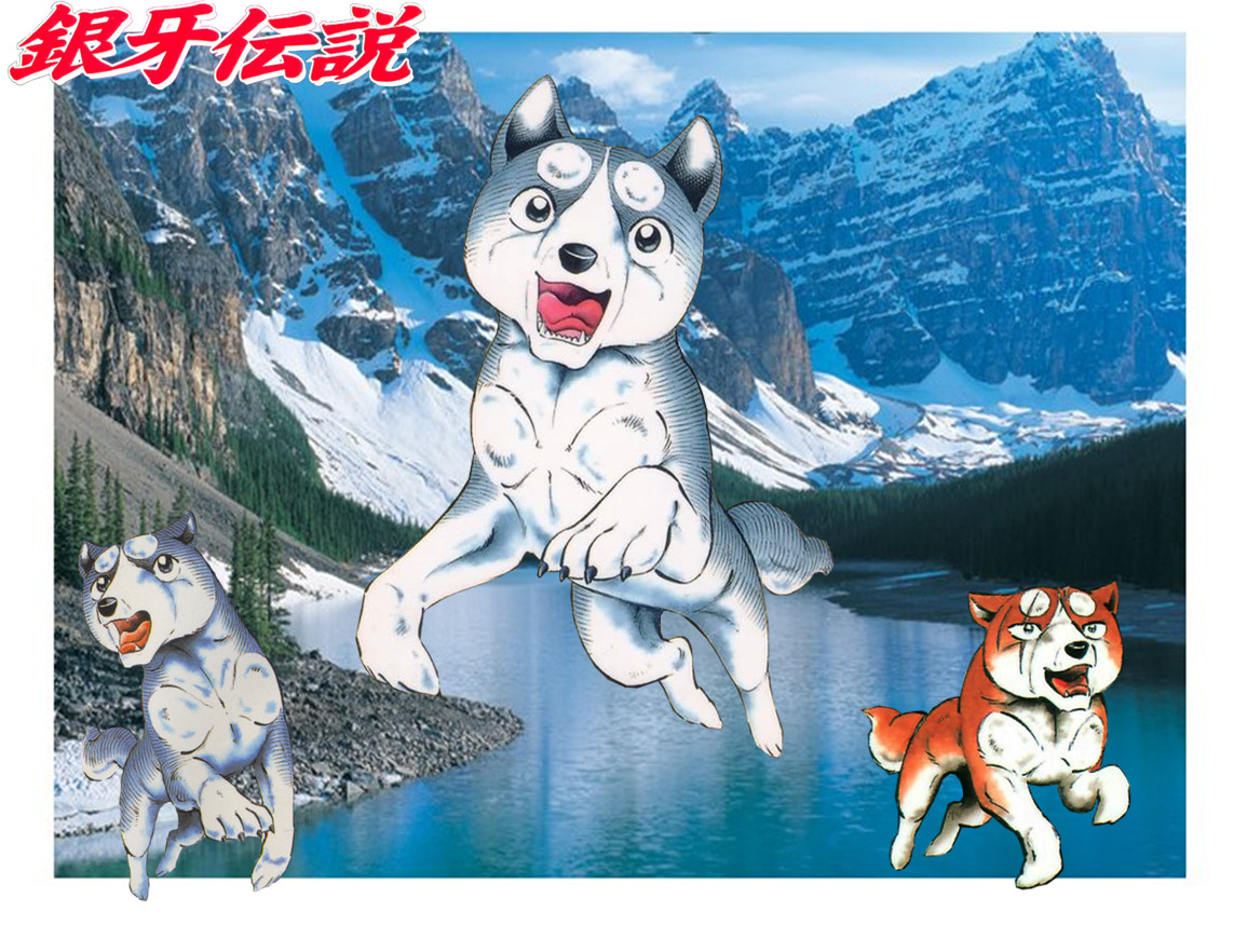 Wallpaper Silver Fang: Ginga Brothers Wallpaper By Lugiaisawesome On DeviantArt