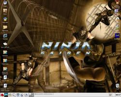 Ninja Gaiden Desktop by DatBoyScrooge