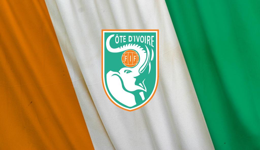 ivory coast logo flag by w00den sp00n