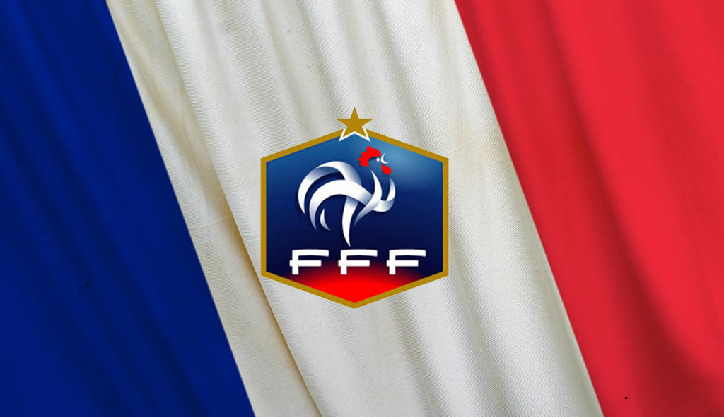 France Logo Flag By W00den Sp00n