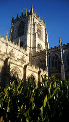 St Mary's Beverley by W00den-Sp00n