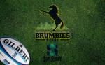 Brumbies by W00den-Sp00n