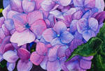 Watercolor Month - Beautiful Blooms - Day 11