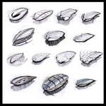 Trilobite Sketches