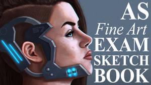 A2 Fine Art Exam Sketchbook look-through by NicolaHynes