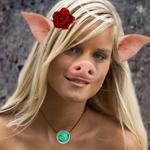 thefienddoyle's Profile Picture