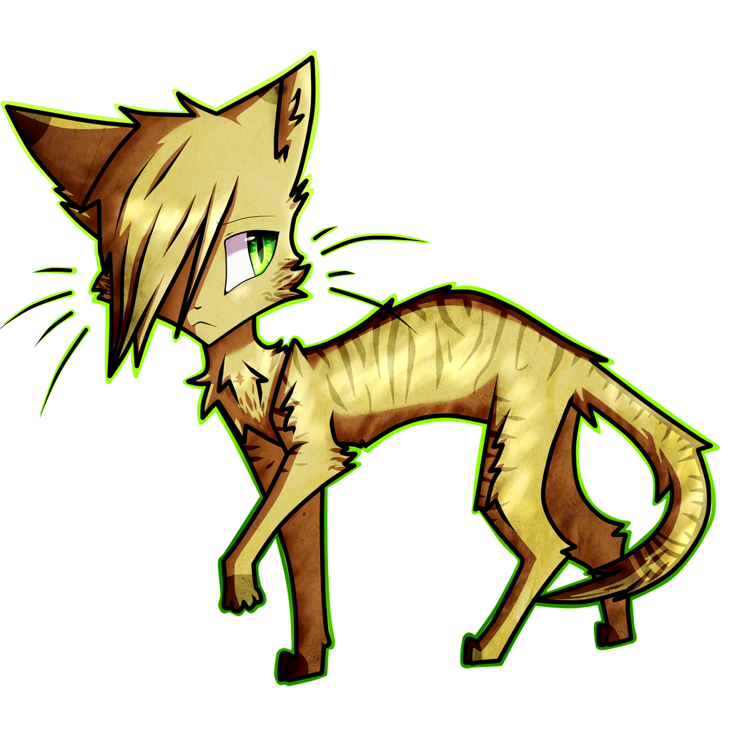sandstorm warrior cats wwwimgkidcom the image kid