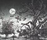 moon meadow by rodulfo