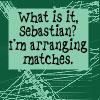 Sebastian and his Matches by lilymichelle