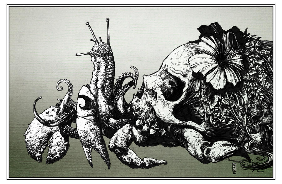 Skull Crab 001 by Scratch1313