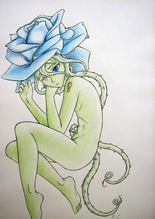 blue rose by LadyNovaDragon
