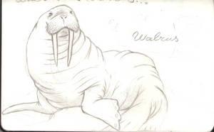 WALRUS!!! by LusitanianDavid