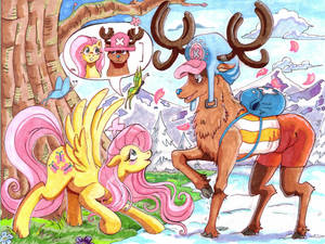 Nakama is Magic: Fluttershy and Chopper's Growth