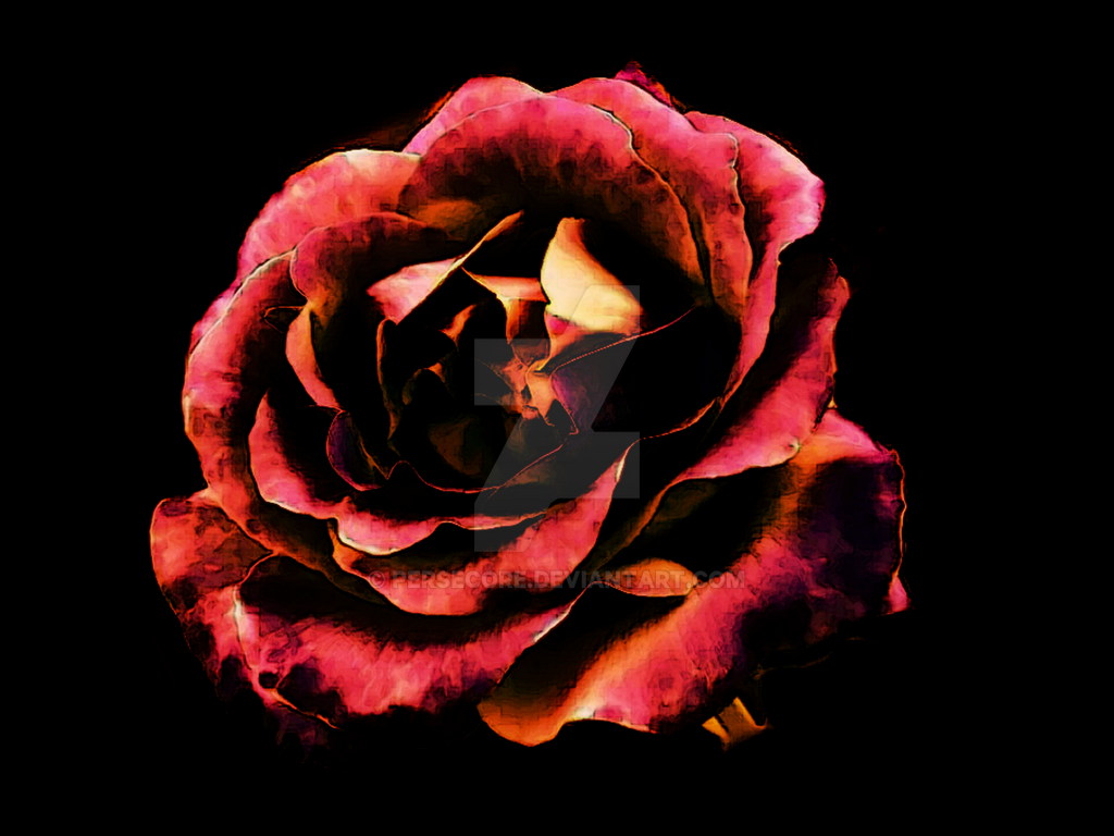 Rose Red by PerseCore