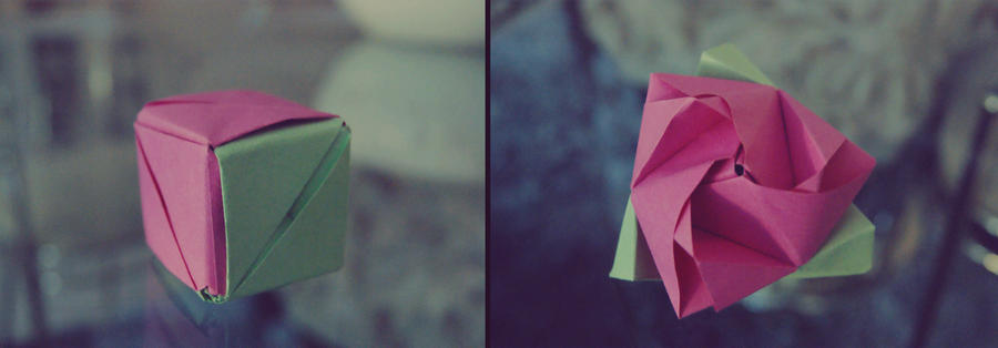 Magic Box Origami by CarlosArthur