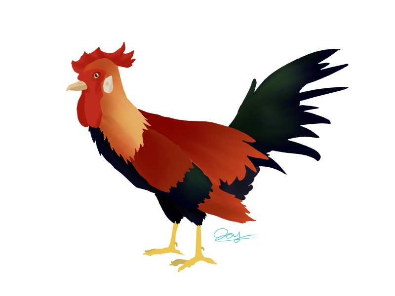 Roosterpaw Avatar