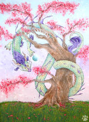 Cherry Blossom by CharlyJade