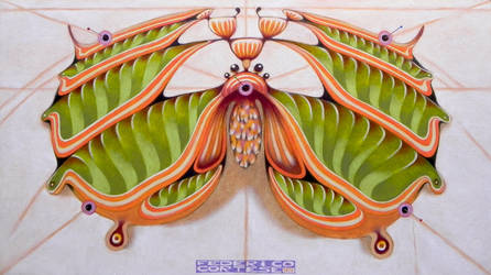 Fibonacci moth by federicocortese