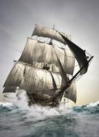 Trade Winds by Bogwoppet