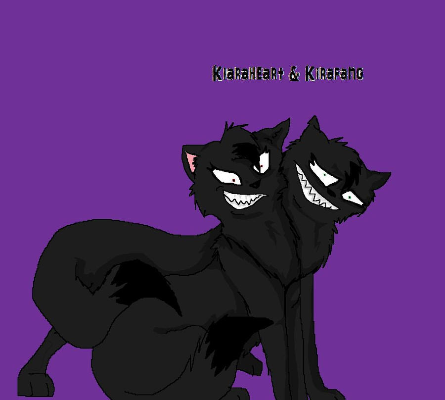 Warrior Cats Dawn Of The Clans Fanart: Fan Art By CHUNUDIAtehINSANYERD On DeviantArt