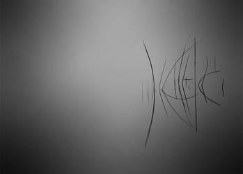 Reflect Grass by Rykardo