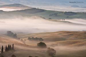 Morning Mist by Rykardo