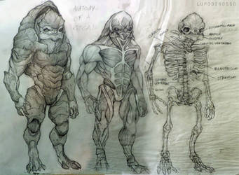 anatomy of a krogan by theredshewolf
