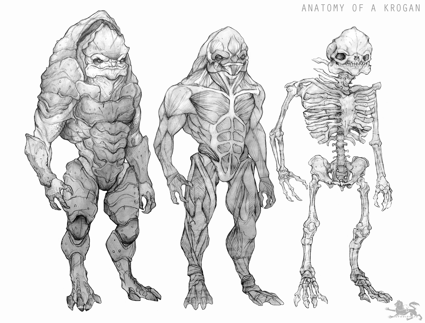 https://orig00.deviantart.net/beef/f/2014/241/4/9/anatomy_of_a_krogan_clean_version_by_lupodirosso-d7x5wy9.jpg
