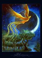 phoenix by fafnyr