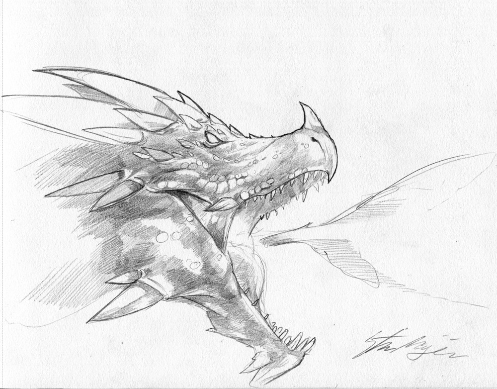 Dragon Sketch by Steves3511
