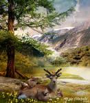 Deer and friends