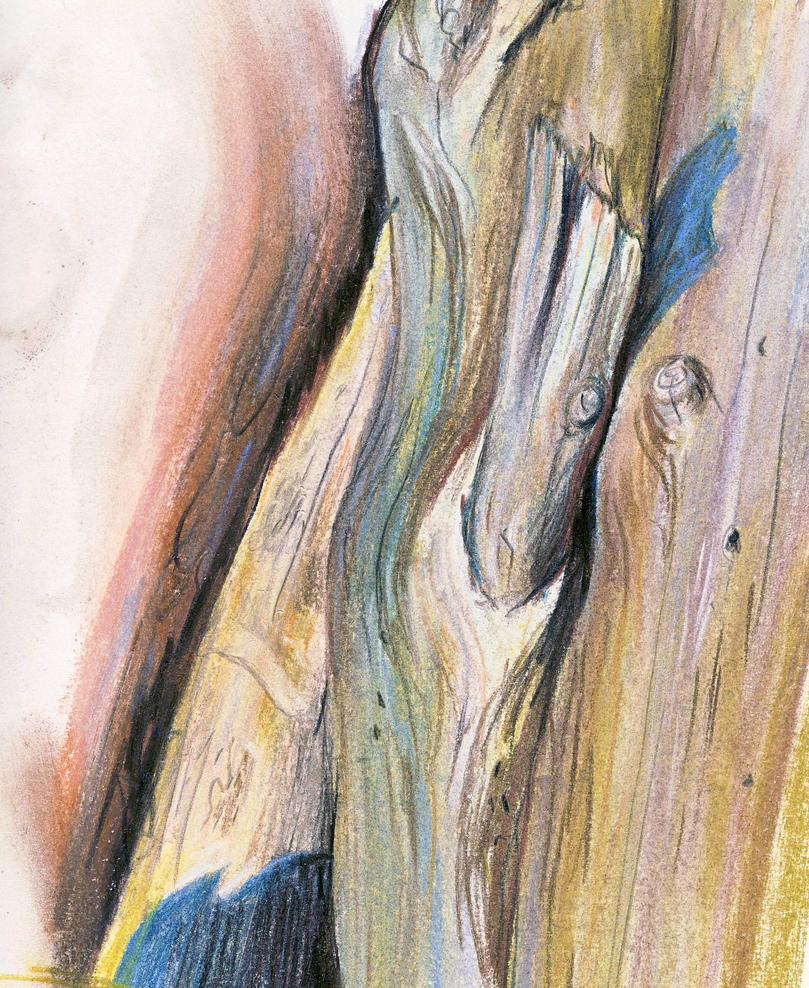 Wood II by Pidlimaja