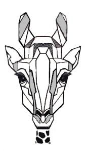 Giraffe33's Profile Picture