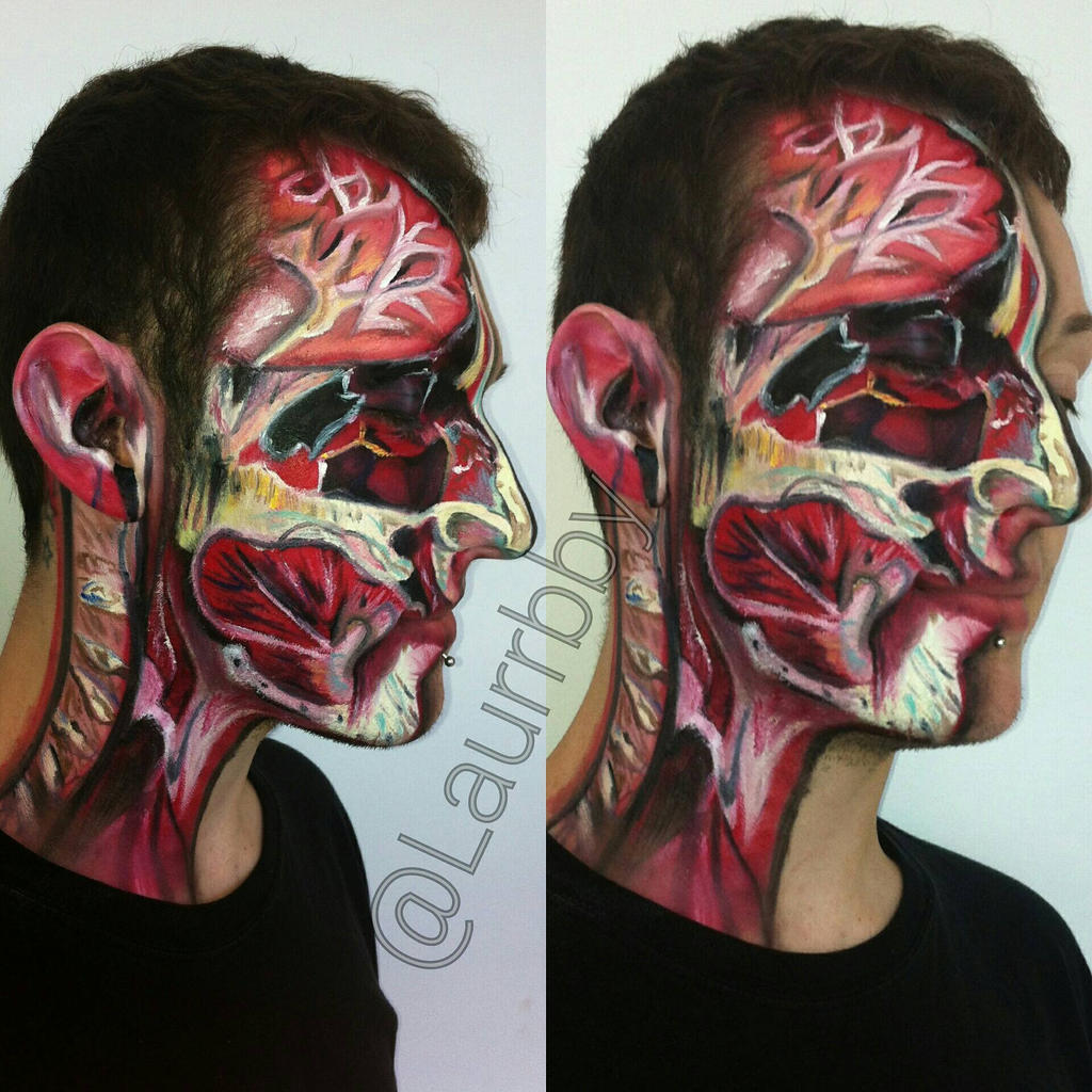 anatomy of the face by laurrbby on DeviantArt