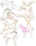 Horse and Deer Studies