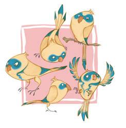 Bird Bandits!