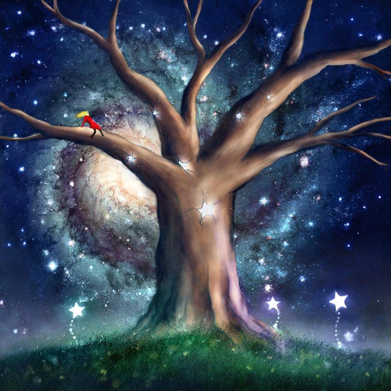 Midnight in Zen Garden