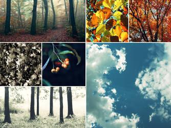 autumn portrait: Lithium