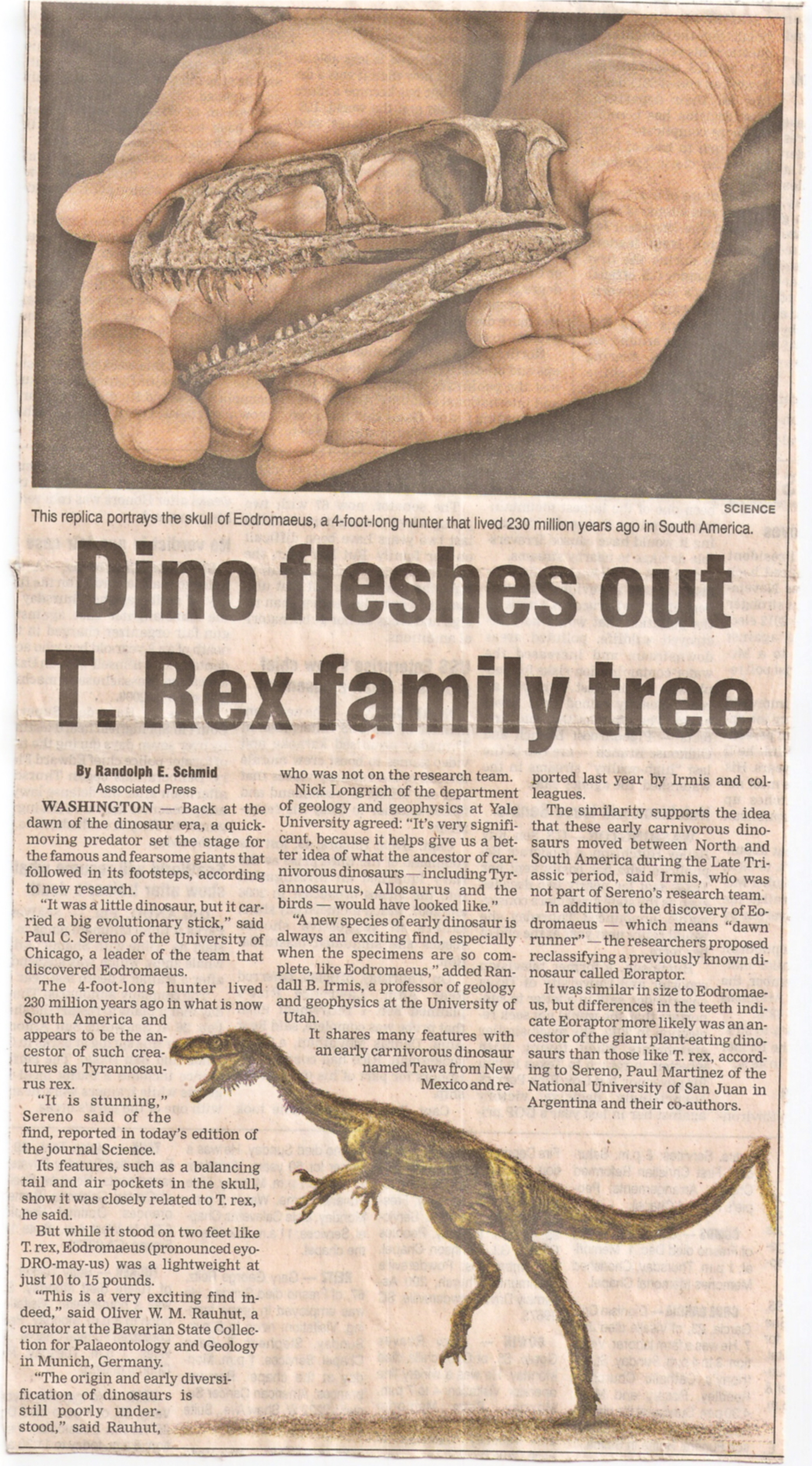 New t rex family member by thespideradventurer on deviantart for T rex family