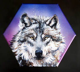 Gray Wolf on Hex Canvas