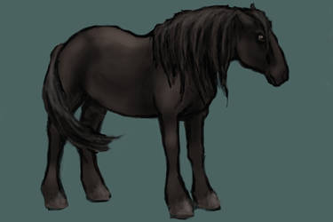 Stranger, the Blasphemously Named Warhorse