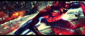 [The Amazing Spider-man]Spider-man sig#2