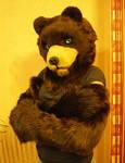 Bear Partial