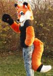 Fox Partial