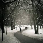 Cycling through winter