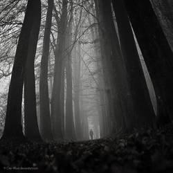 Wanderer II