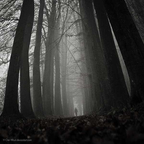 Wanderer II by Oer-Wout