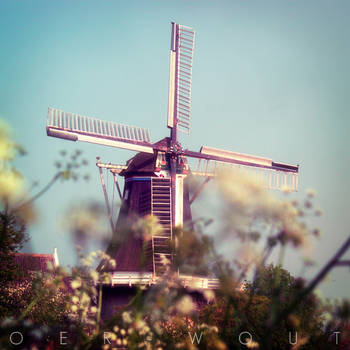 From Holland with Love by Oer-Wout
